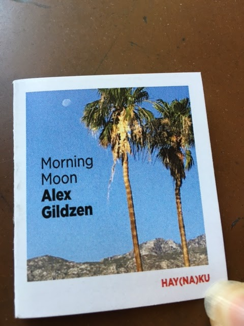 Eileen Verbs Books: MORNING MOON by ALEX GILDZEN