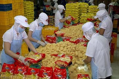 Xuất Khẩu Lao động Nhật Bản chế biến thực phẩm Lương 154.800 Yên/tháng