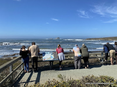 viewers at Piedras Blancas Elephant Seal Rookery overlook in San Simeon, California