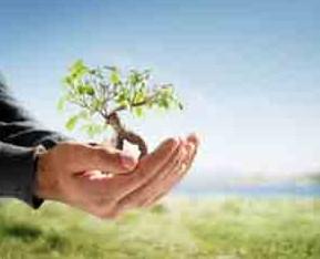 Pengertian Asas Keadilan Dalam Lingkungan Hidup