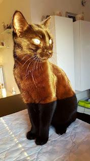 Золотисто-чёрный