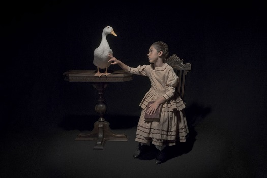 Photo by Tami Bahat - The Waterfowl - 2017 - From the Dramatis Personae series | fotos surrealistas bellas, imagenes chidas de obras de arte contemporaneo en claroscuro | afliccion, soledad y tristeza