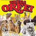 A Piazza Armerina l'unico Circo in Italia con due gabbie (grandi felini)