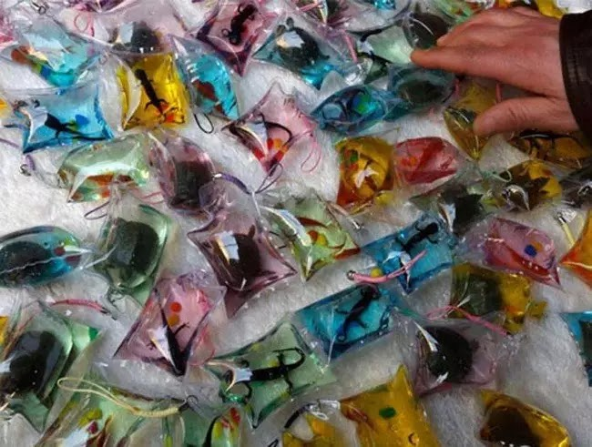 Animals Trapped Alive In Keychains Are Sold For $1.50 In China