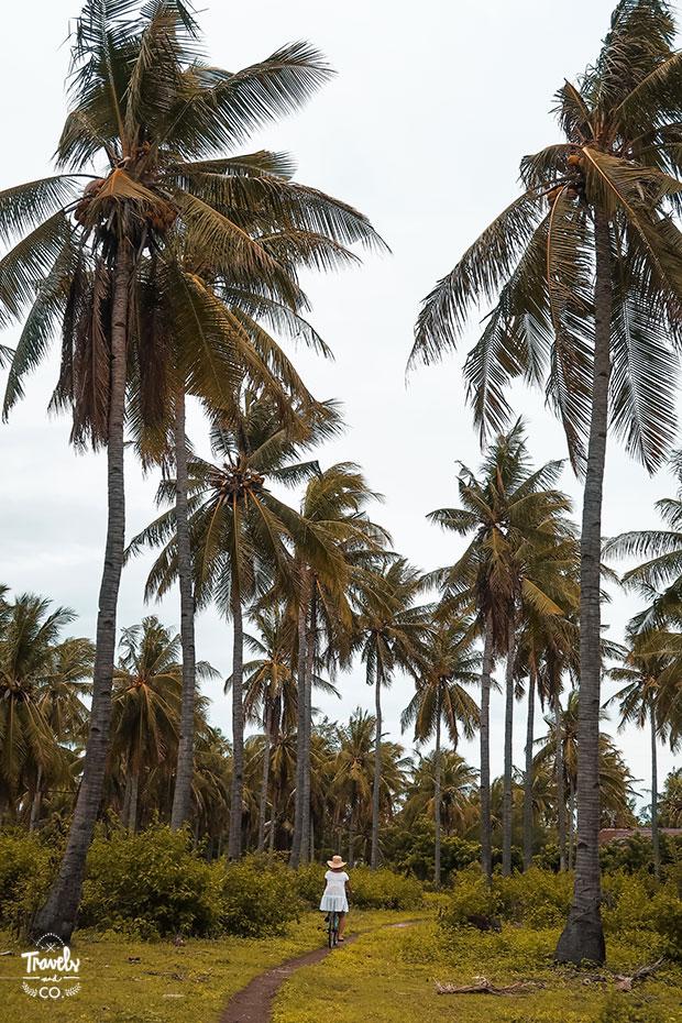 Que hacer en las islas Gili bicicleta