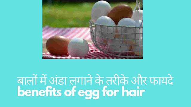 बालों में अंडा लगाने के तरीके और फायदे - how to apply egg on hair for silky hair in hindi