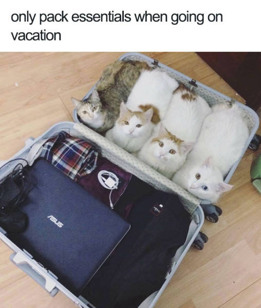 Only pack essentials when going vacation