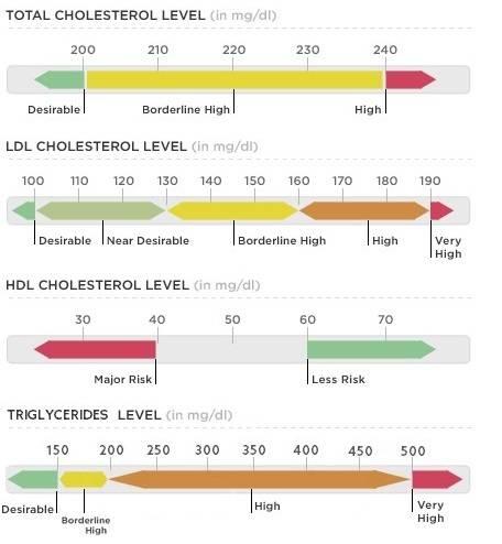 Cholesterol level chart