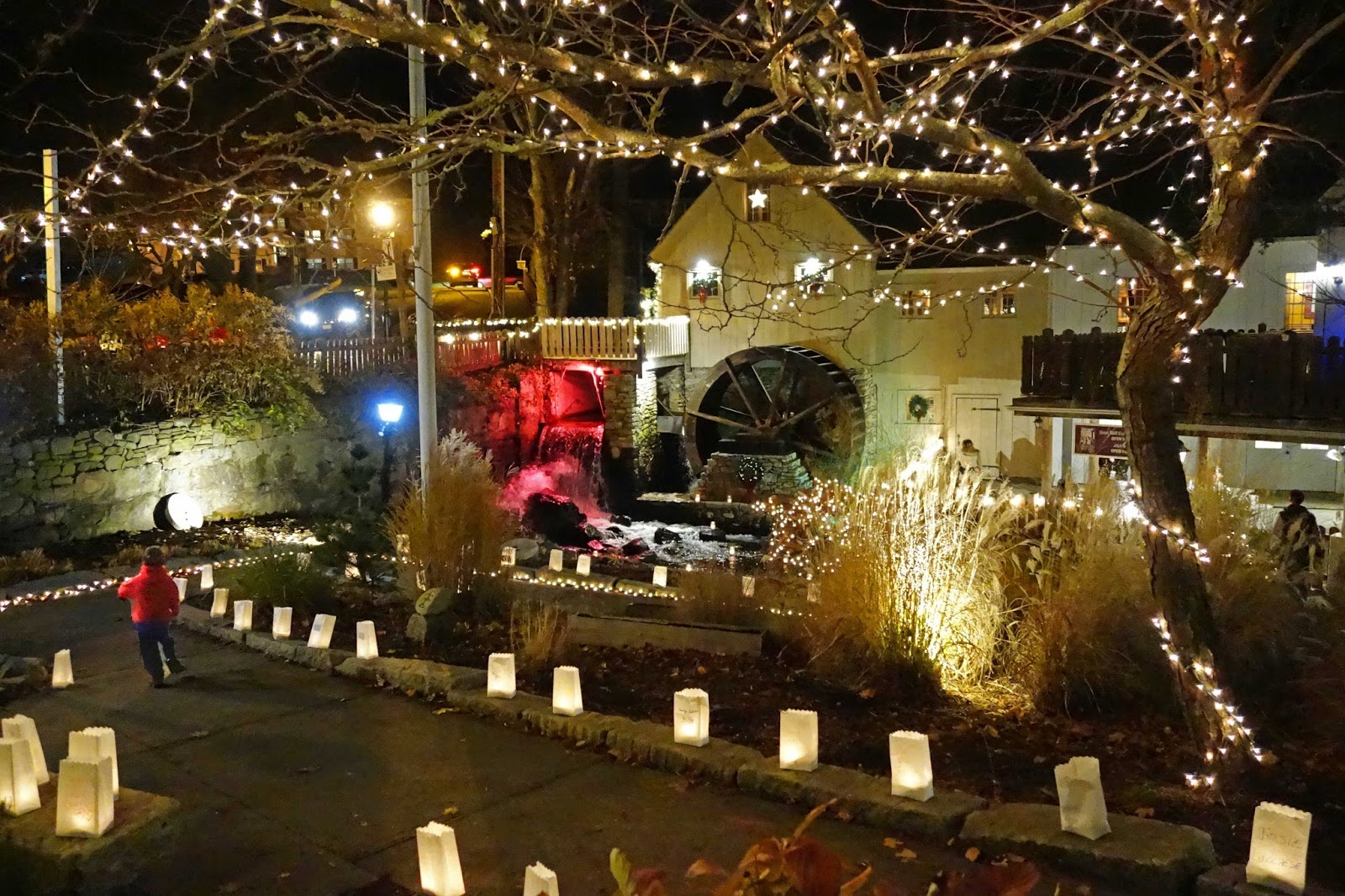 Joe's Retirement Blog: Lights of Hope Luminaria Display ...
