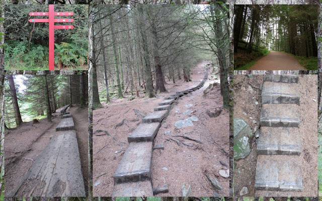 Hillwalking at Glendalough in County Wicklow - Ascending 600 wooden steps through the forest