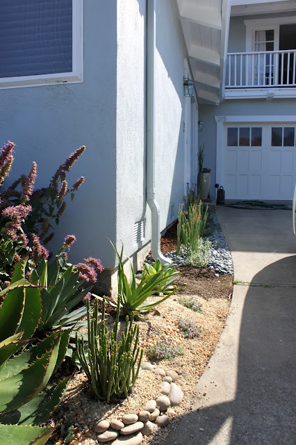 narrow planted space infront of house