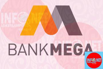 Mega Management Development Program (MMDP) Bank Mega