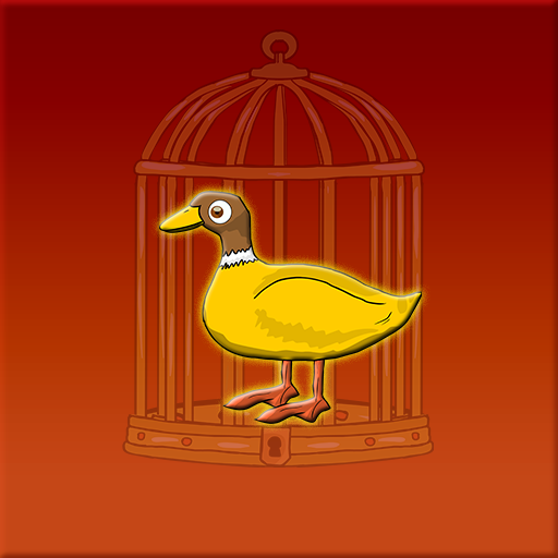 Waterfowl Escape From Cage