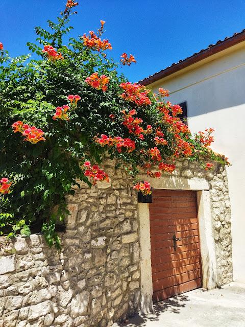 Nin – królewskie miasto Dalmacji.