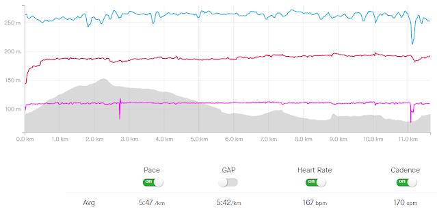 Strava Run Graph