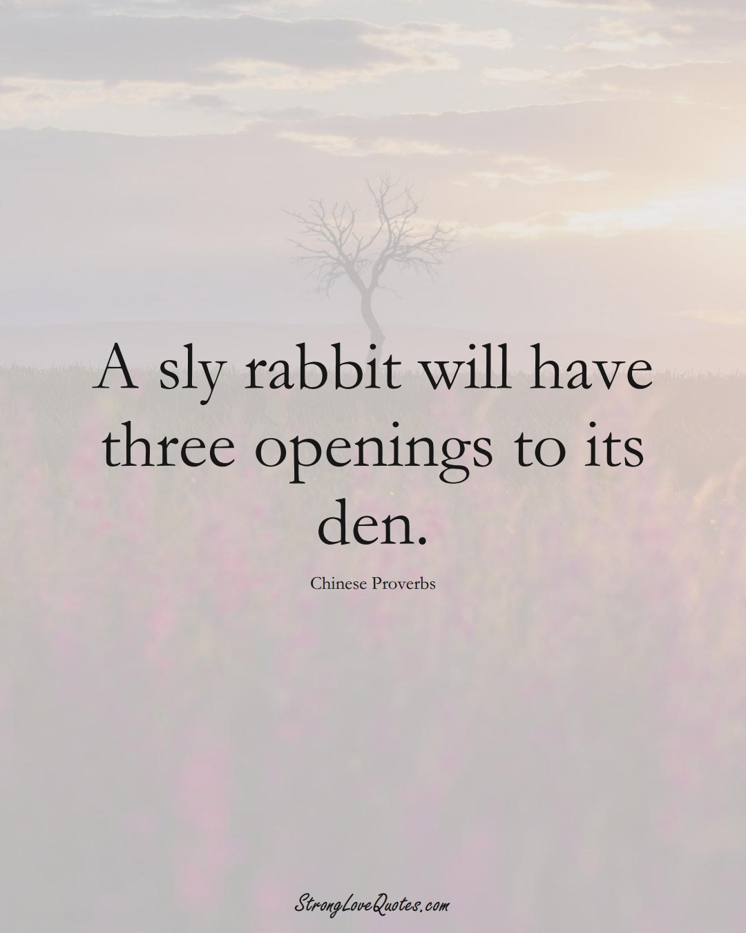 A sly rabbit will have three openings to its den. (Chinese Sayings);  #AsianSayings