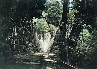 jembatan dengan bahan kayu rotan di batang toru tapanuli selatan