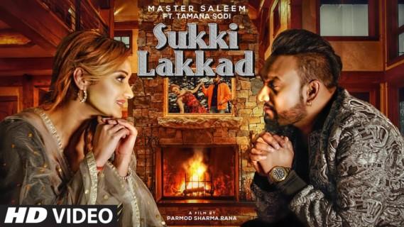 [Lyrics] Master Saleem - Sukki Lakkad