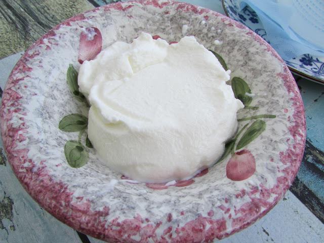 tradycyjny domowy grecki jogurt