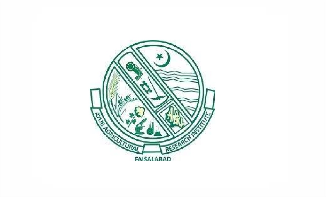 Latest Ayub Agriculture Research Institute AARI Research Posts Faisalabad 2021