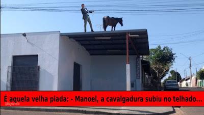 Cavalo no telhado com Bolsonaro. Montagem