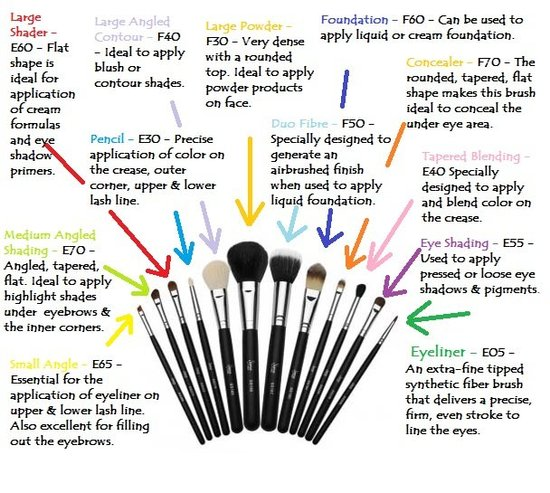 Selly Chelly Beauty Makeup Brushes Amp Their Uses