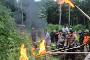 Ladang Ganja Seluas 15 Hektar di Hutan Lamteuba Dimusnahkan