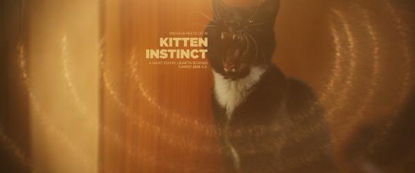 kitten instinct
