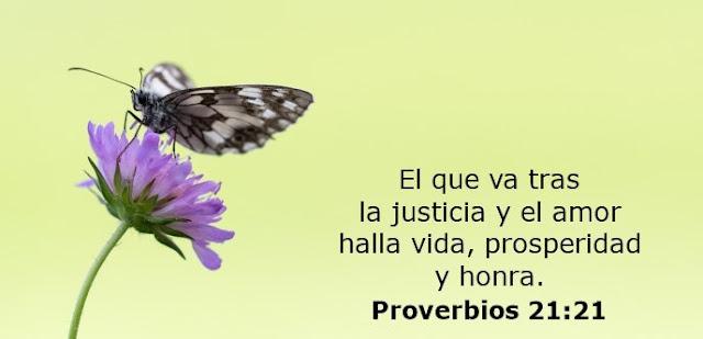 El que va tras la justicia y el amor halla vida, prosperidad y honra.