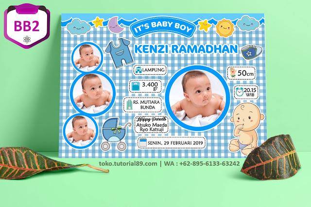 Biodata Bayi Costume Baby Boy Kode BB2