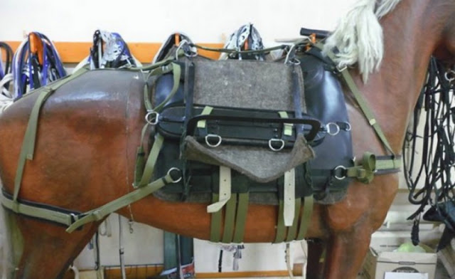 Вьючное седло для лошади