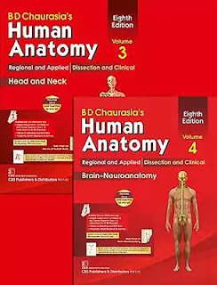 Download BD Chaurasia Human Anatomy Volume 3 and 4 Head and Neck and Neuroanatomy PDF.