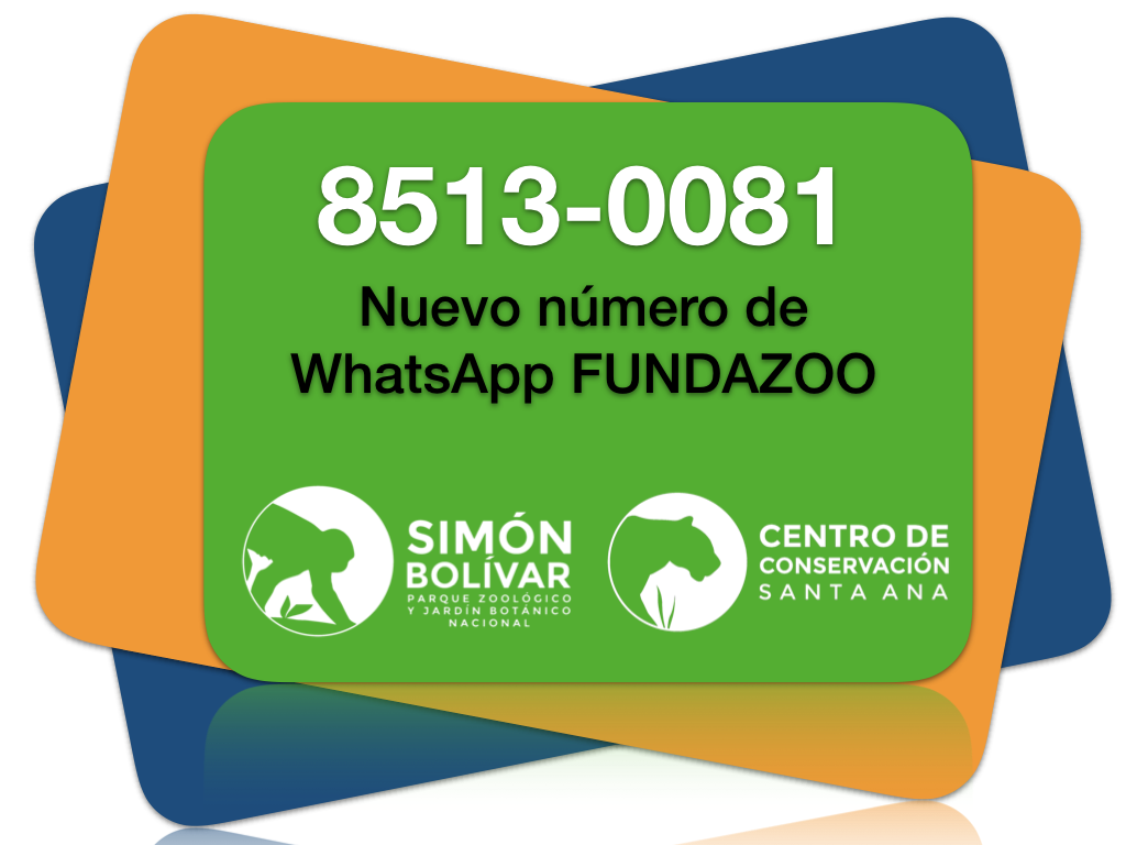 ¡Estamos en Whatsapp!