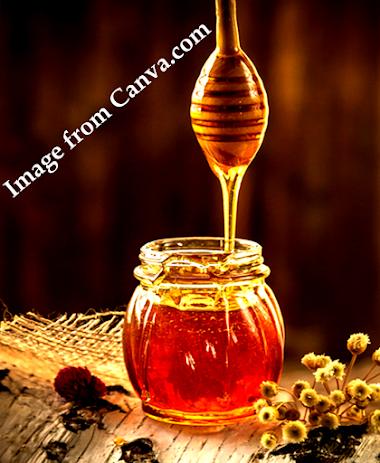 Honey Western honey bee medicinal uses and Honey nutrition.