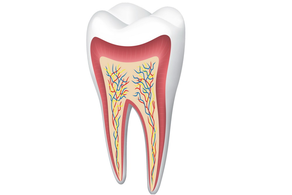 molar tooth abscess - 1000×667