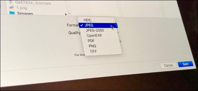يعرض تطبيق MacOS Preview خيارات لتحويل الصور بين PNG و JPG و TIFF والمزيد