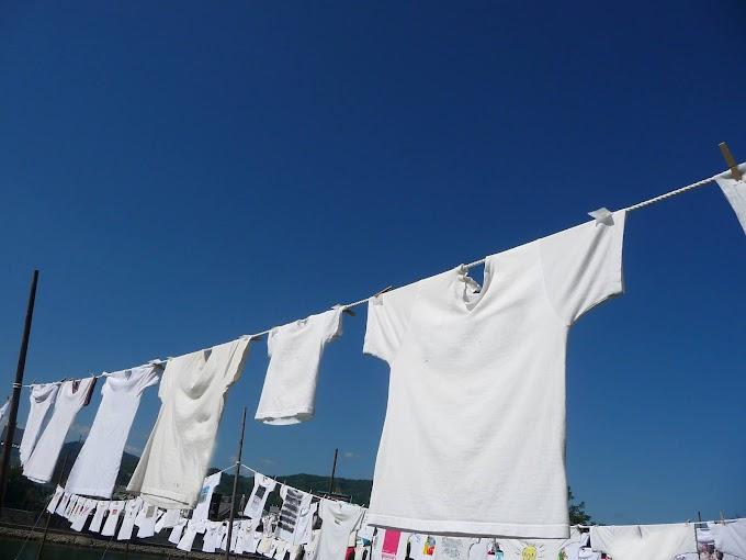 294 #夏 #青空 #Tシャツ #爽やか #青