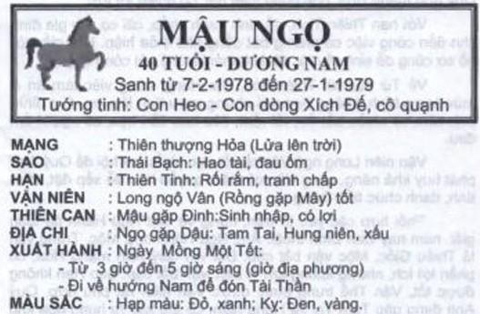 TỬ VI TUỔI MẬU NGỌ 1978 NĂM 2017
