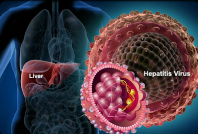 Early Warning Signs of Hepatitis