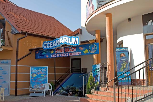 oceanarium w Rewalu, widok na atrakcje miasta