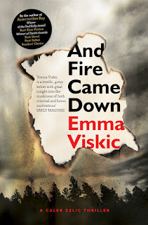 And Fire Came Down by Emma Viskic book cover