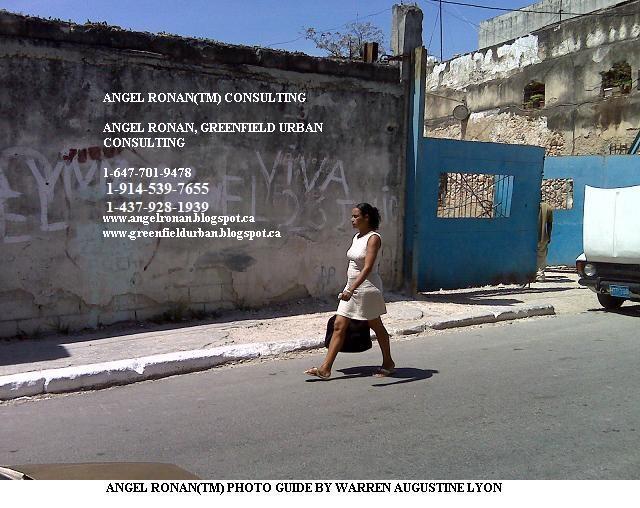 Conceptual Marketing Corporation - ANALYSIS INFORMATION