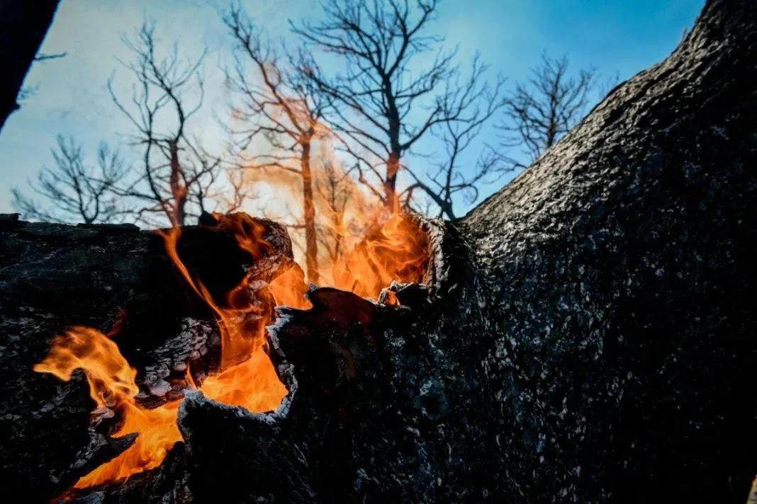 Ο 43χρονος κατηγορούμενος για εμπρησμό στο Κρυονέρι παρίστανε τον εθελοντή πυροσβέστη