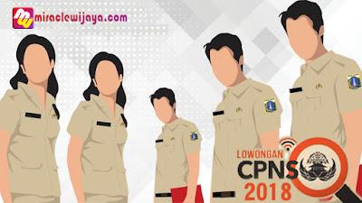 Lowongan CPNS 2018 Dibuka Kembali, Untuk Mengisi 110 Ribuan PNS 2018