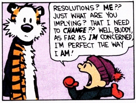 """Image de la BD """"Calvin & Hobbes"""" sur les bonnes résolutions"""