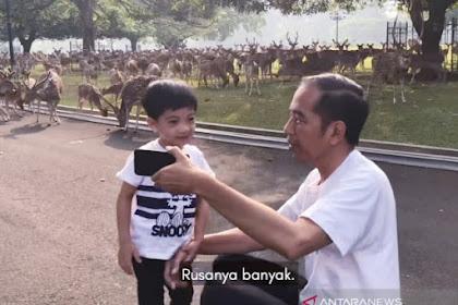 Rocky Gerung Sebut Jokowi Baik Jadi Vlogger, Buruk sebagai Presiden