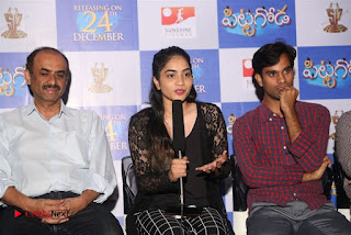 Pittagoda Telugu Movie Press Meet  0020.jpg