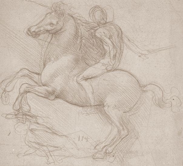 Leonardo da Vinci   Drawings Tutt Art