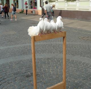 Черновцы. Пешеходная улица Ольги Кобылянской