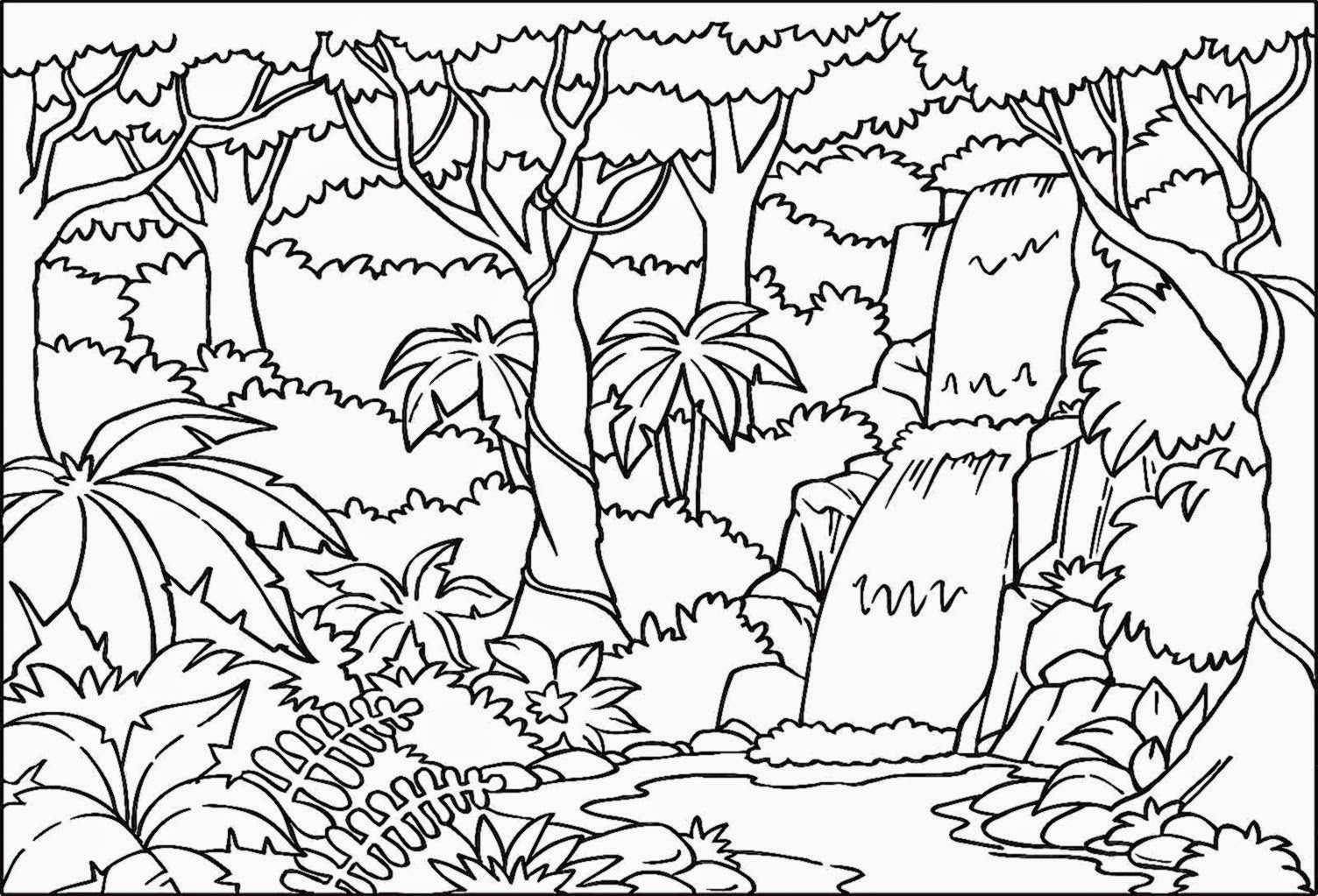forest coloring pages printable rainforest coloring sheets free coloring sheet